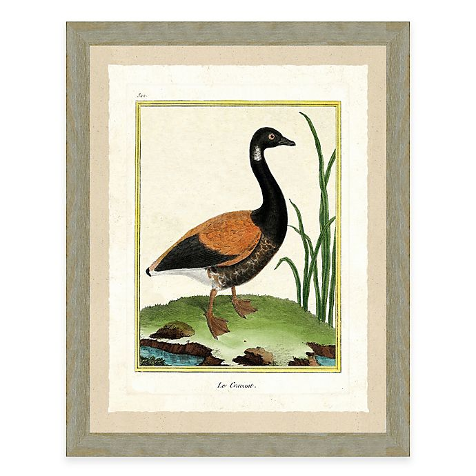 Goose Ii Framed Art Print Bed Bath Beyond