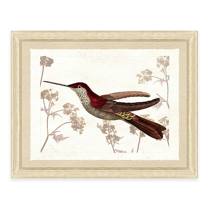 Alternate image 1 for Hummingbird Scene III Framed Art Print