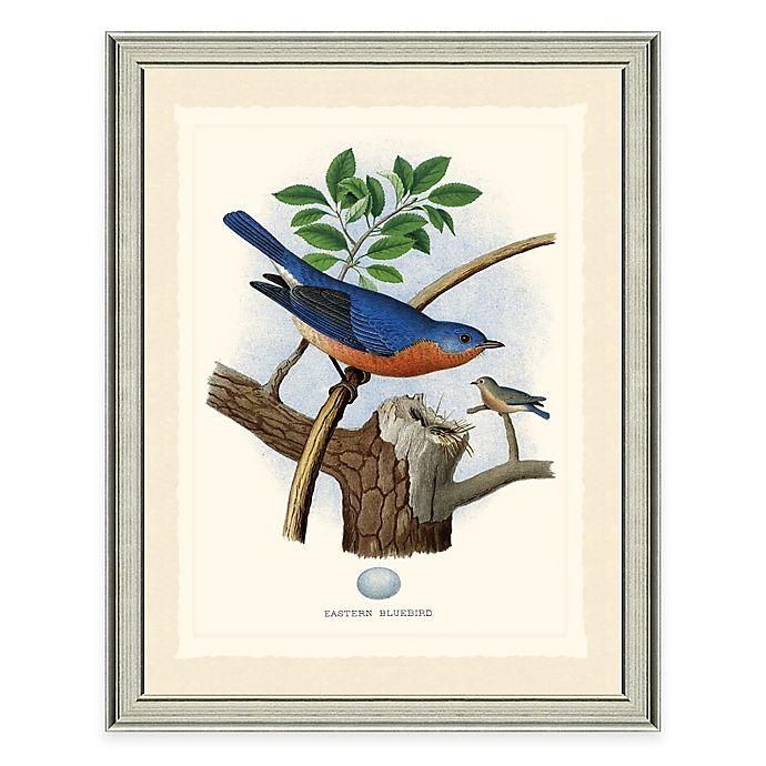 Alternate image 1 for The Framed Giclée Bluebird Print Wall Art
