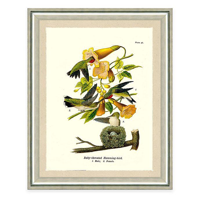 Alternate image 1 for The Framed Giclée Hummingbird Print Wall Art