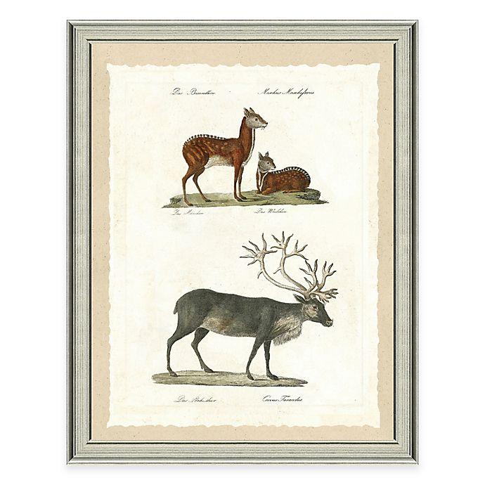 Alternate image 1 for The Framed Giclée Deer and Elk Print Wall Art