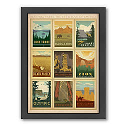 National Parks: Multi-Print 2 Framed Wall Art by Anderson Design Group