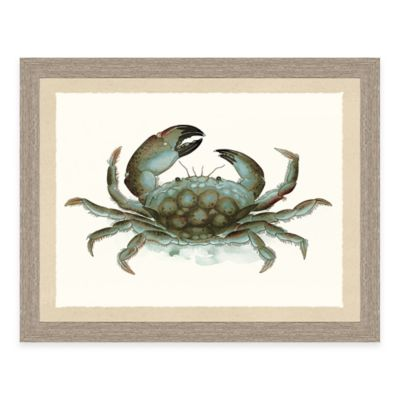 Crab Decor Bed Bath Beyond