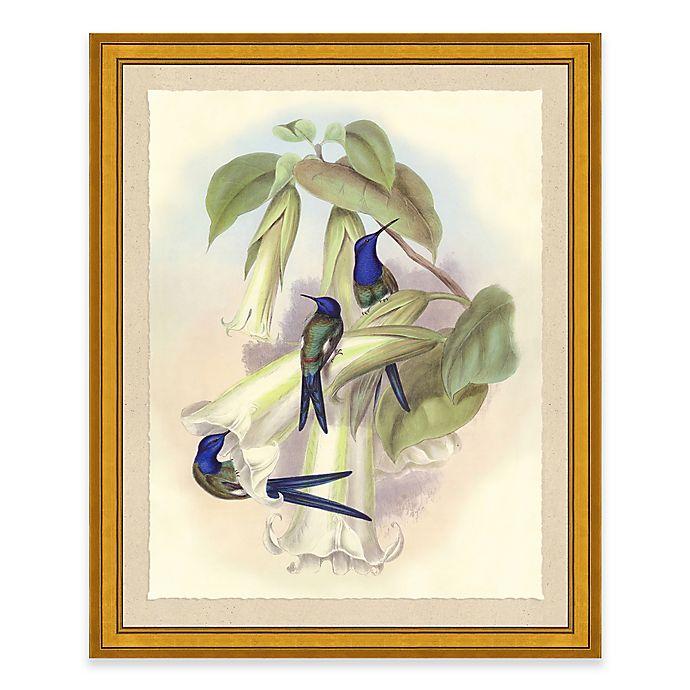 Alternate image 1 for Hummingbird I Framed Wall Art Print