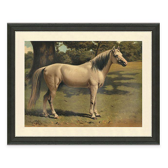 Alternate image 1 for Horse Scene II Framed Art Print
