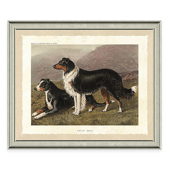 Alternate image 1 for Dog Scene II Framed Art Print