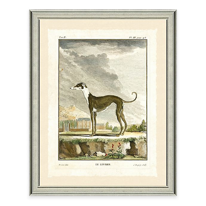 Alternate image 1 for Dog Scene I Framed Wall Art Print