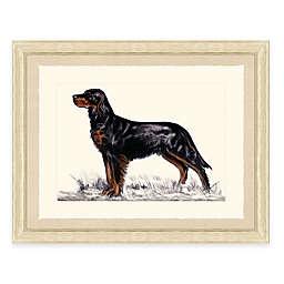 Hunting Dog II Framed Art Print