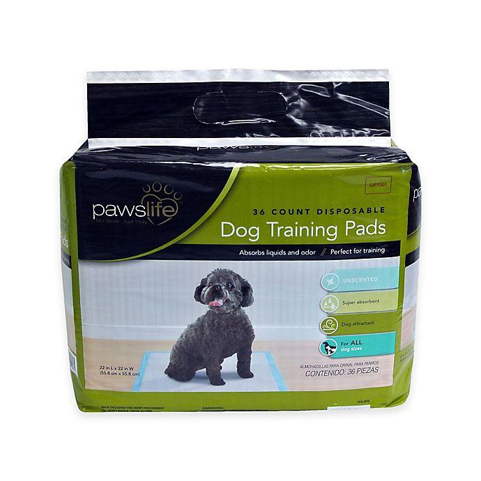 Alternate image 1 for Pawslife® Dog Training Pads