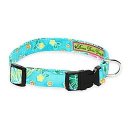 Donna Devlin Designs Tropical Punch Adjustable Dog Collars