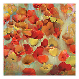 Pied Piper Creative Delightful Flowers 16-Inch x 16-Inch Canvas Wall Art