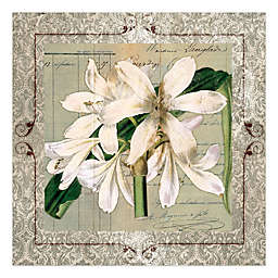 Pied Piper Creative Lovely Blooms 16-Inch x 16-Inch Canvas Wall Art