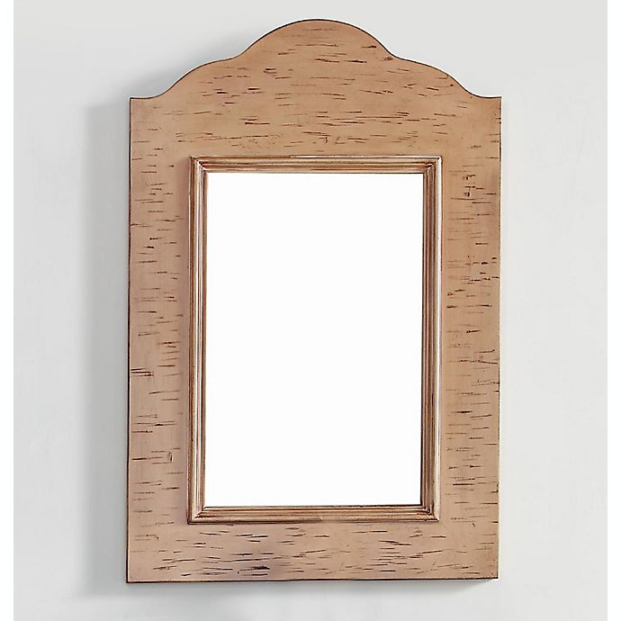 Alternate image 1 for James Martin Furniture Copper Cove 23-Inch Mirror in Driftwood Patina