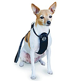 Travel Safety Harness™ in Black