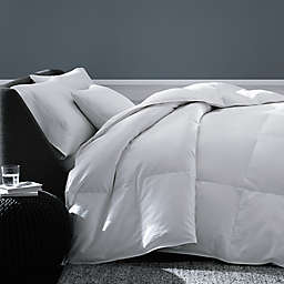 The Seasons Collection® Cotton Year Round Warmth White Goose Down Twin Comforter