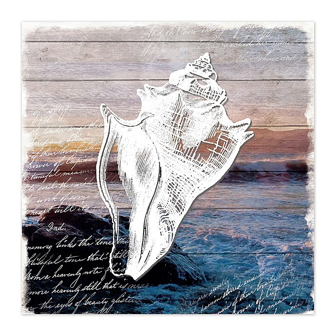 Alternate image 1 for Conch Shell Canvas Wall Art