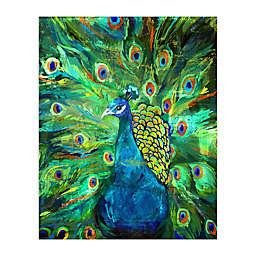 Pied Piper Creative Peacock Power 16-Inch x 20-Inch Canvas Wall Art