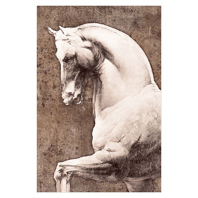 Alternate image 1 for Pied Piper Creative Stoic White Horse 24-Inch x 36-Inch Canvas Wall Art