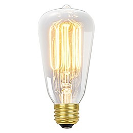Vintage Edison 60-Watt S60 Light Bulb in Clear