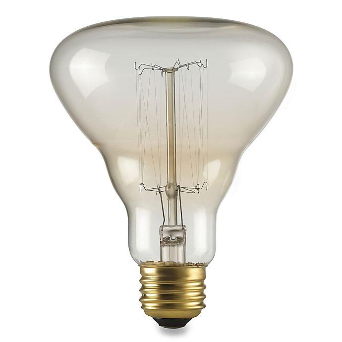 Alternate image 1 for Labo 40-Watt Light Bulb in Clear