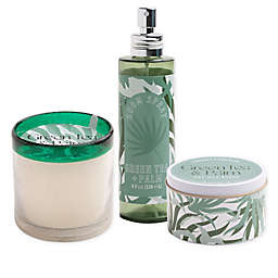 Green Tea & Palm Candle Collection