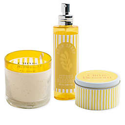 Citrus Blossom Candle Collection