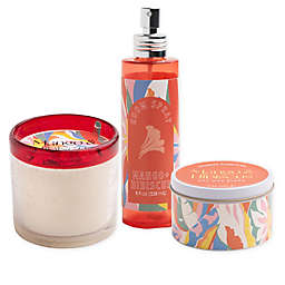 Mango & Hibiscus Candle Collection