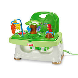 Fisher-Price®Rain