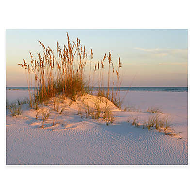 Sea Oats and Sand All Weather Outdoor Canvas Wall Art