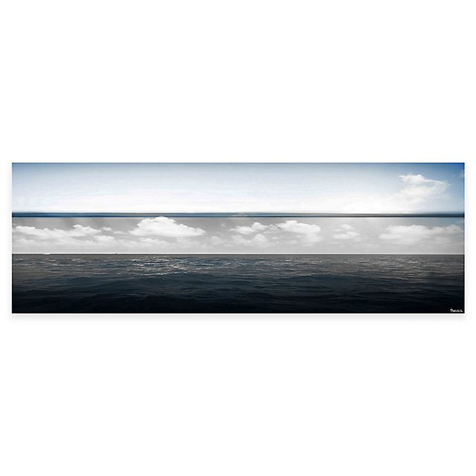 Alternate image 1 for Parvez Taj Fading Clouds 60-Inch x 20-Inch Canvas Wall Art