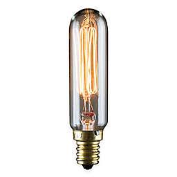 Lumin by Luminance Nostalgia Era 10-Pack 25-Watt Incandescent T6 Small Tube Shape Bulb in Amber