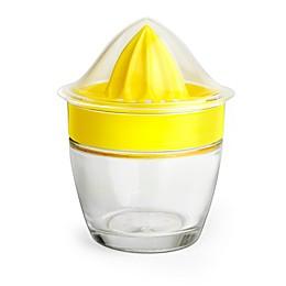 Prepara® Glass Juicer