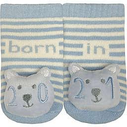 IQ Kids Size 0-12M 2021 Bear Rattle Socks in Blue