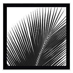 Jamie Kingham Palms 14 Framed Photographic Print