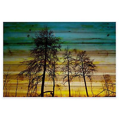 Parvez Taj Emerald Sky Pine Wood Wall Art