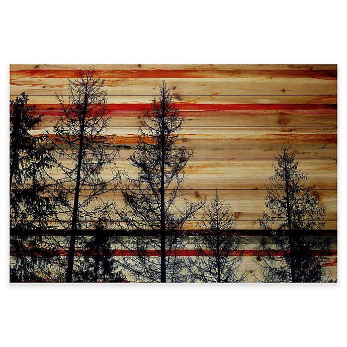 Parvez Taj Trees Against Red Sky 60 Inch X 40 Inch Pine Wood Wall