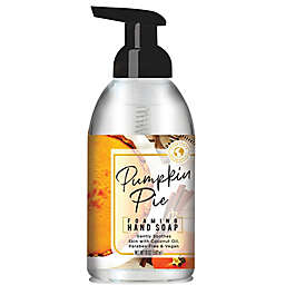 Home and Body Company Clean Earth 19 oz. Pumpkin Pie Foaming Hand Soap
