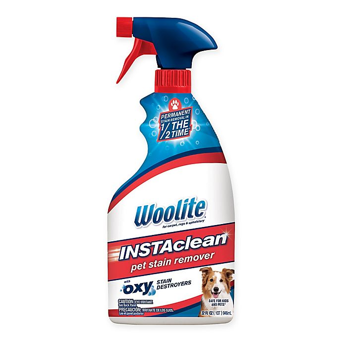 Alternate image 1 for Woolite® InstaClean™ 22 oz. Pet Stain Remover