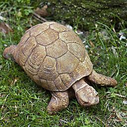 Campania Turtle Garden Statue in Brownstone