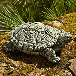 Campania My Pet Turtle Garden Statue in Alpine Stone