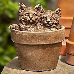 Campania Sprouts Kitten Garden Statue in Brownstone