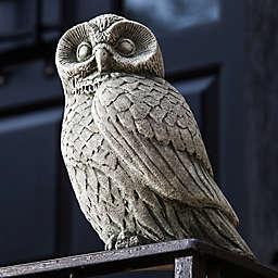 Campania Night Owl Indoor/Outdoor Garden Statuary in Alpine Stone