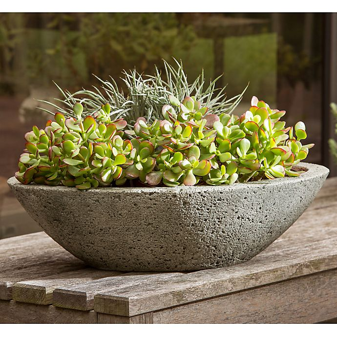 Alternate image 1 for Campania Celine Planter in Alpine Stone