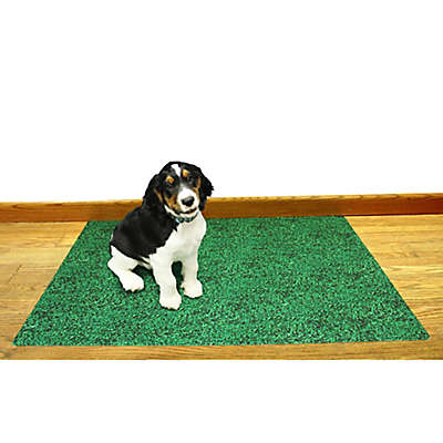 Drymate® Reusable Potty Training Pad for Dogs