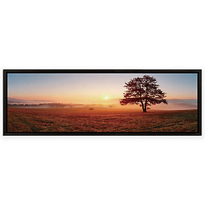 Elementem Photography Sunset on the Prairie Framed Photographic Wall Art