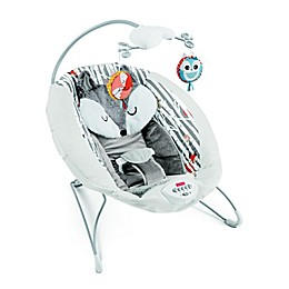 Fisher-Price® See & Soothe Fox Deluxe Bouncer in Mint
