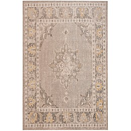 Safavieh Montage Indoor/Outdoor Barkley Rug