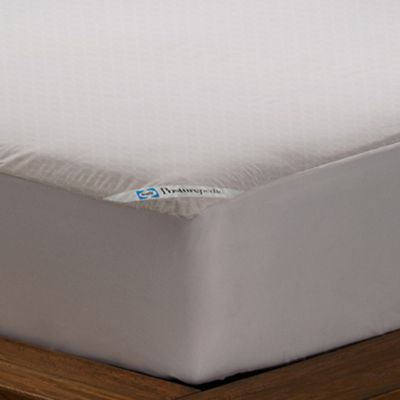 Sealy Posturepedic Allergy Protection Mattress Cover Bed Bath Beyond