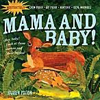 Indestructibles: Momma and Baby!  book by Kaaren Pixton