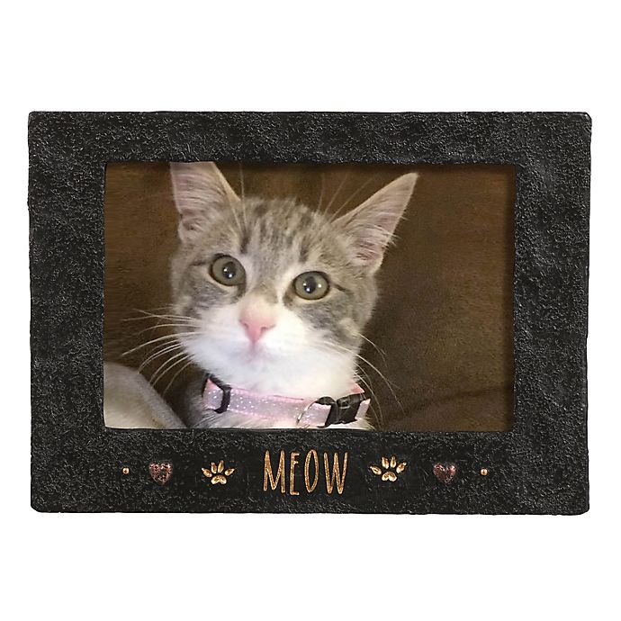 Alternate image 1 for Grasslands Road™ 4-Inch x 6-Inch Cement Meow Picture Frame in Black